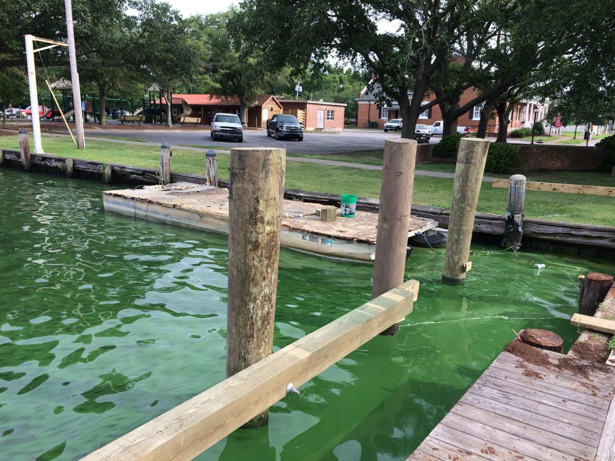 Algae Bay Dock.JPG