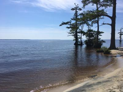 Round-up: living in Eastern NC