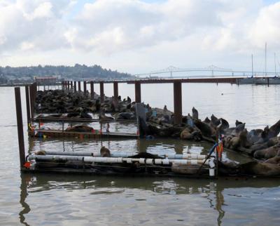 Port of Astoria