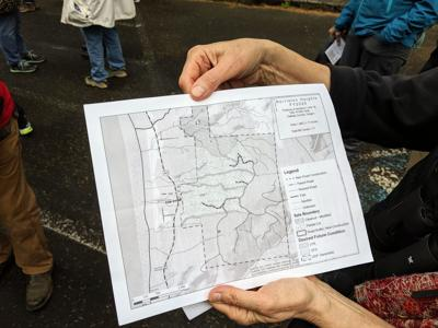 Map of proposed state timber sale near Hug Point