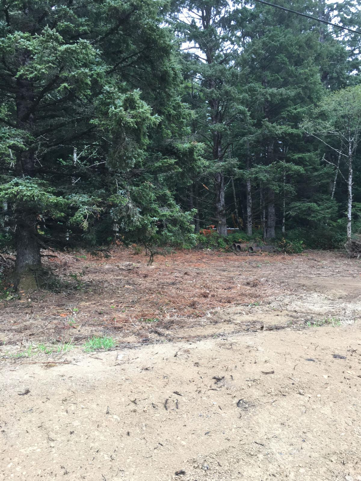 Arcadia Beach RV park draws concerns