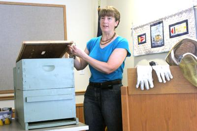 Catching a 'buzz' at Seaside library presentation