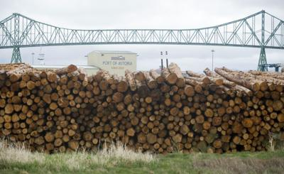 Executive dropped from lawsuit over log exports at Port