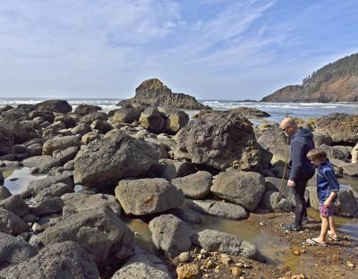 Oregon takes a new look at rocky shores