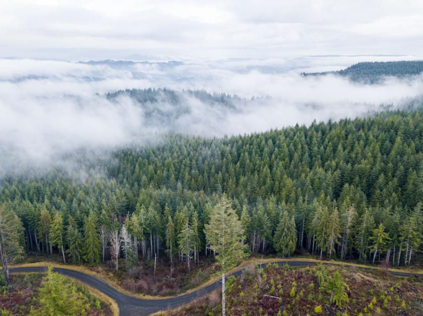 Wind energy project possible for eastern Clatsop County - Daily Astorian