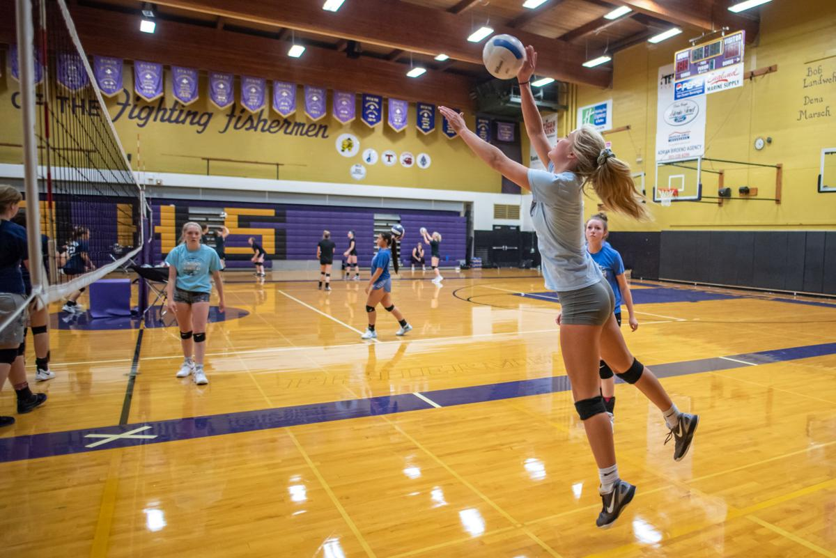 AHS Volleyball Hit