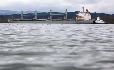 Grounded bulk carrier sustained significant damage