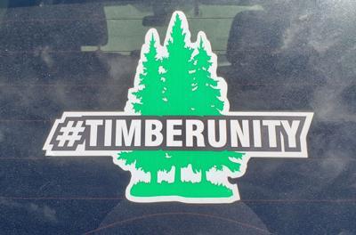#TimberUnity