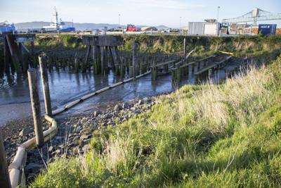 Deal reached on Port oil cleanup