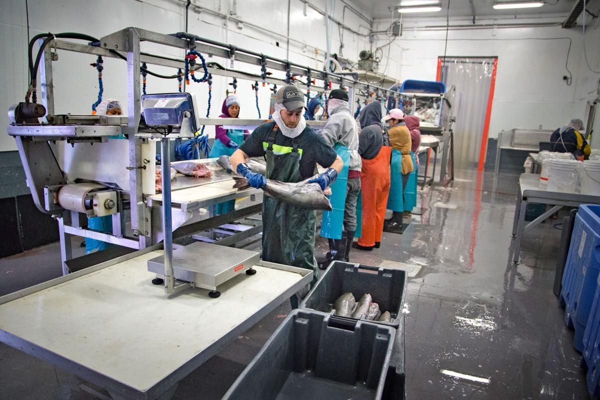 South Bend Products  Seafood processor hopeful tariffs won't derail success