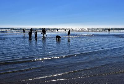 Health advisory issued for Cannon Beach