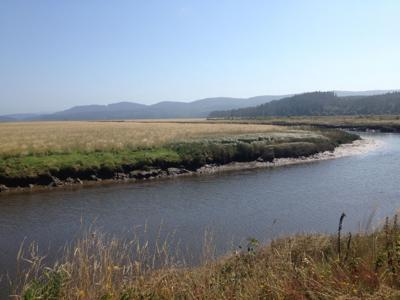 Friends group works to expand Willapa wildlife refuge access