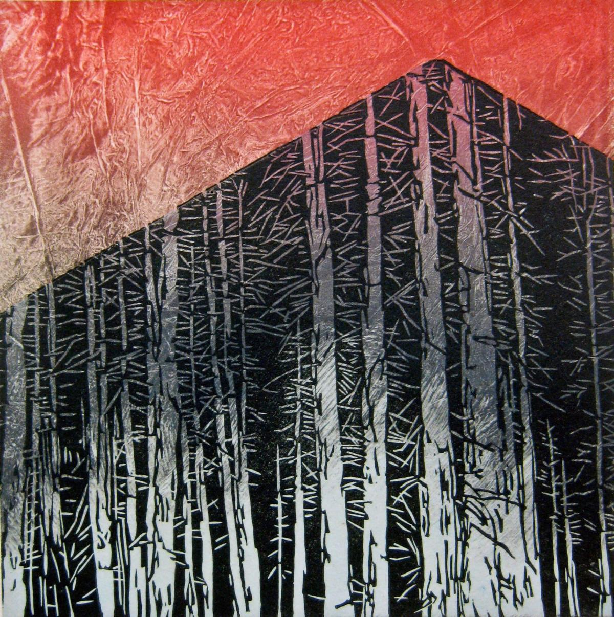 Exhibit of prints investigates the effects of time on landscapes