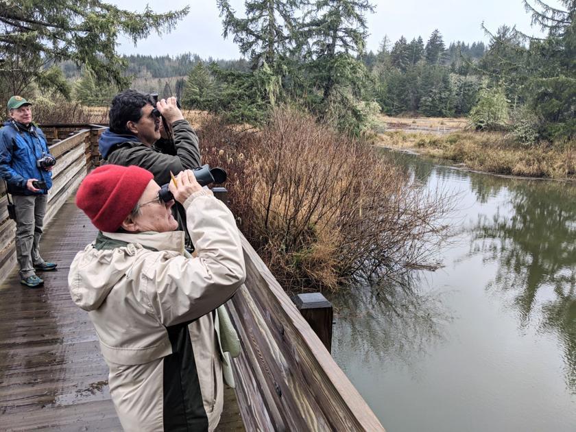 Backyard bird count lands in Clatsop County