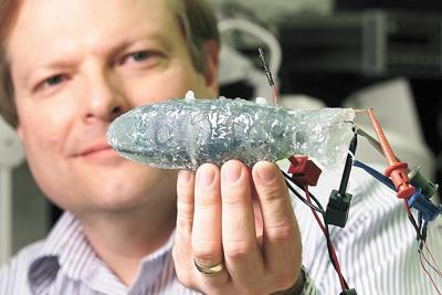 sensor fish