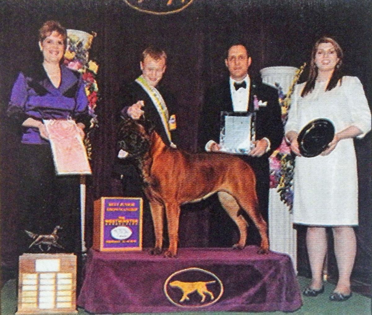 Dog awards