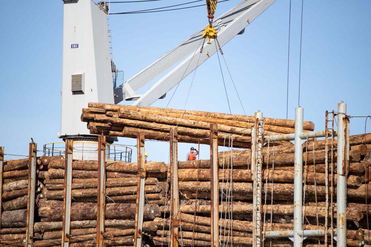 Logs loading