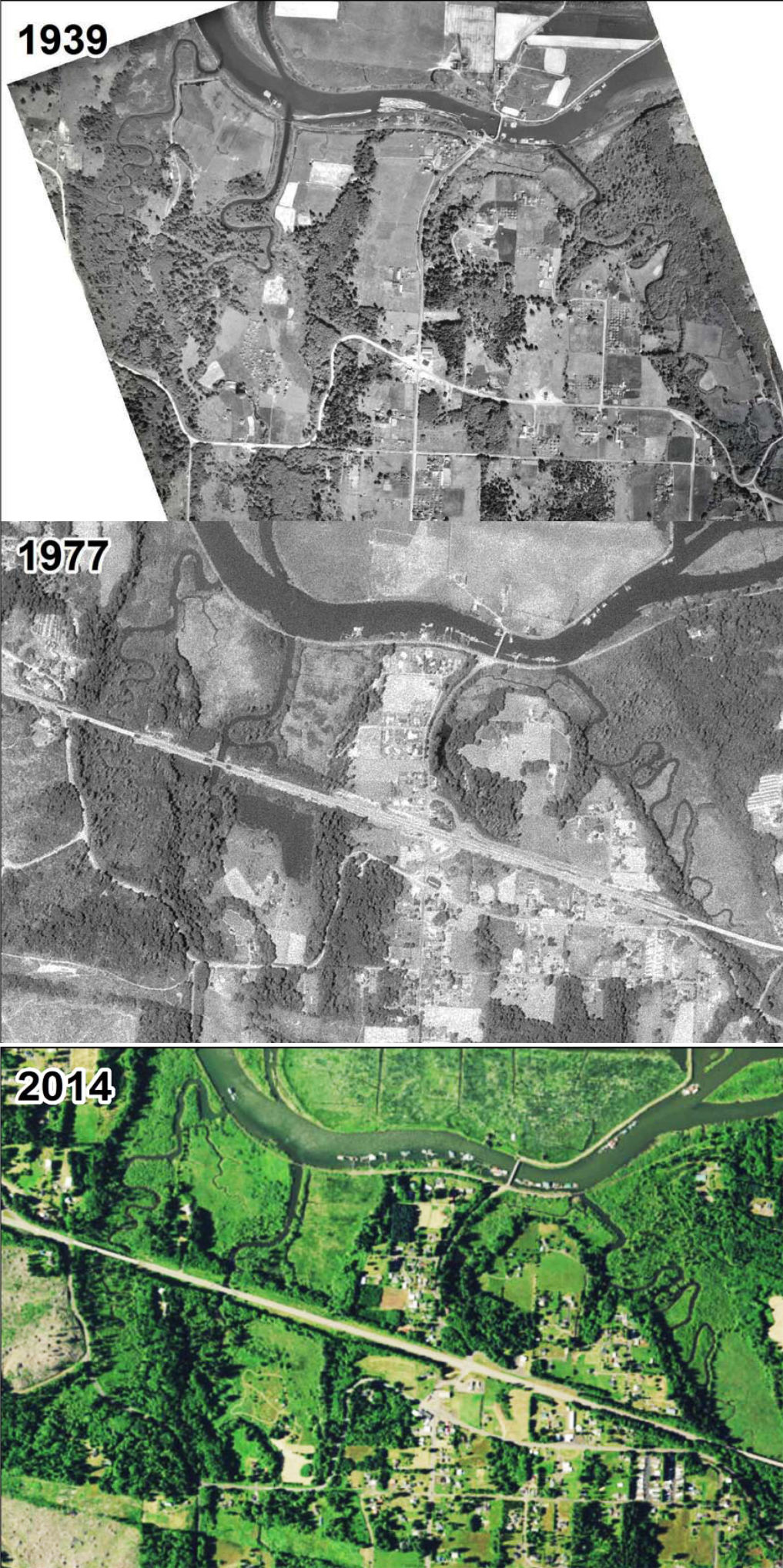 From farms to salmon swamps