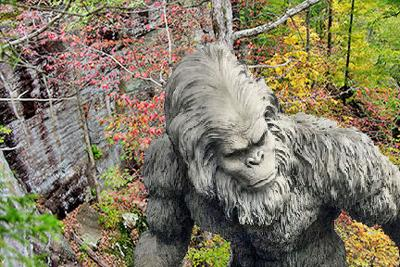 In One Ear: Want to meet Bigfoot?