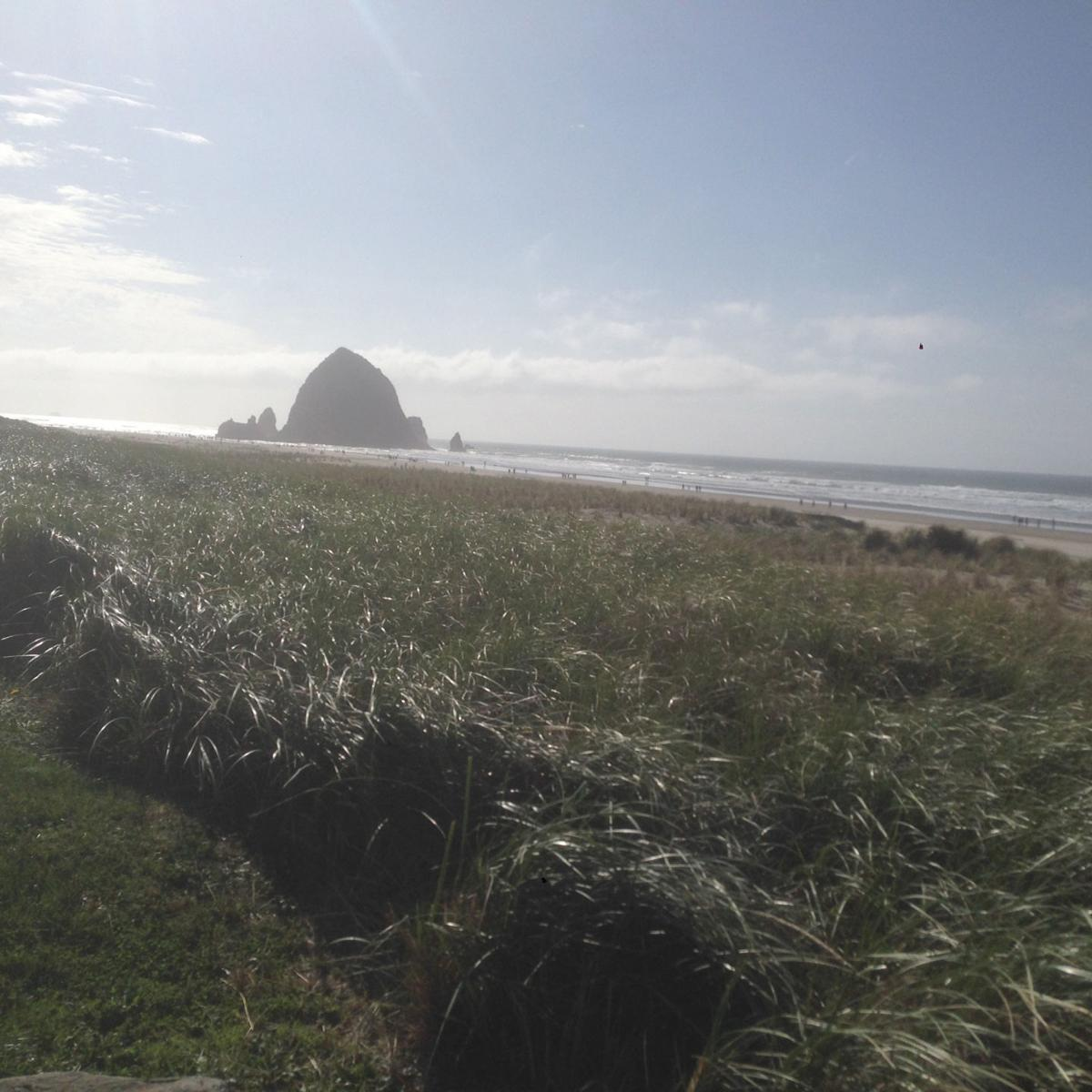 Cannon Beach to leave dune-grading ordinance as is