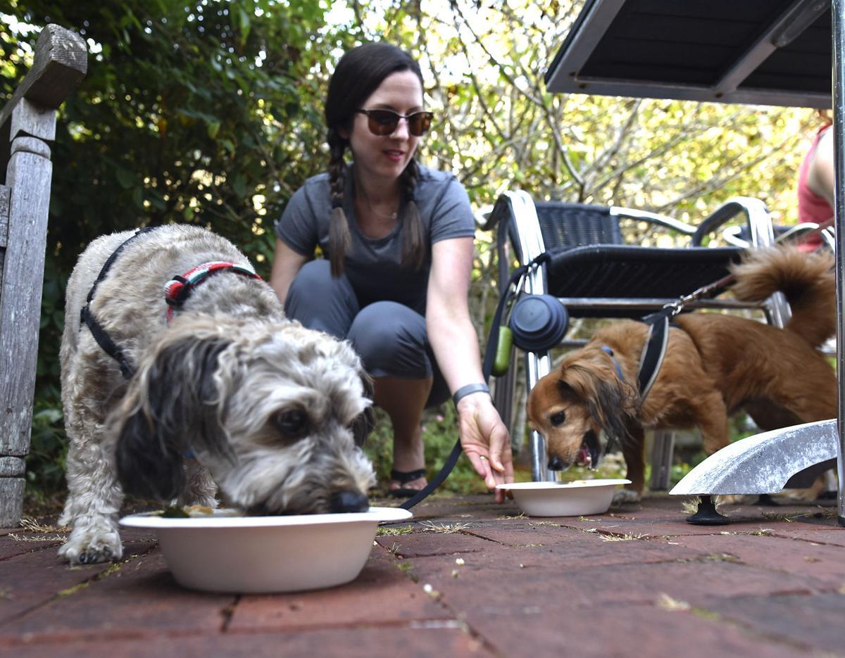 Bone appetit: Pup-friendly bistro in Cannon Beach