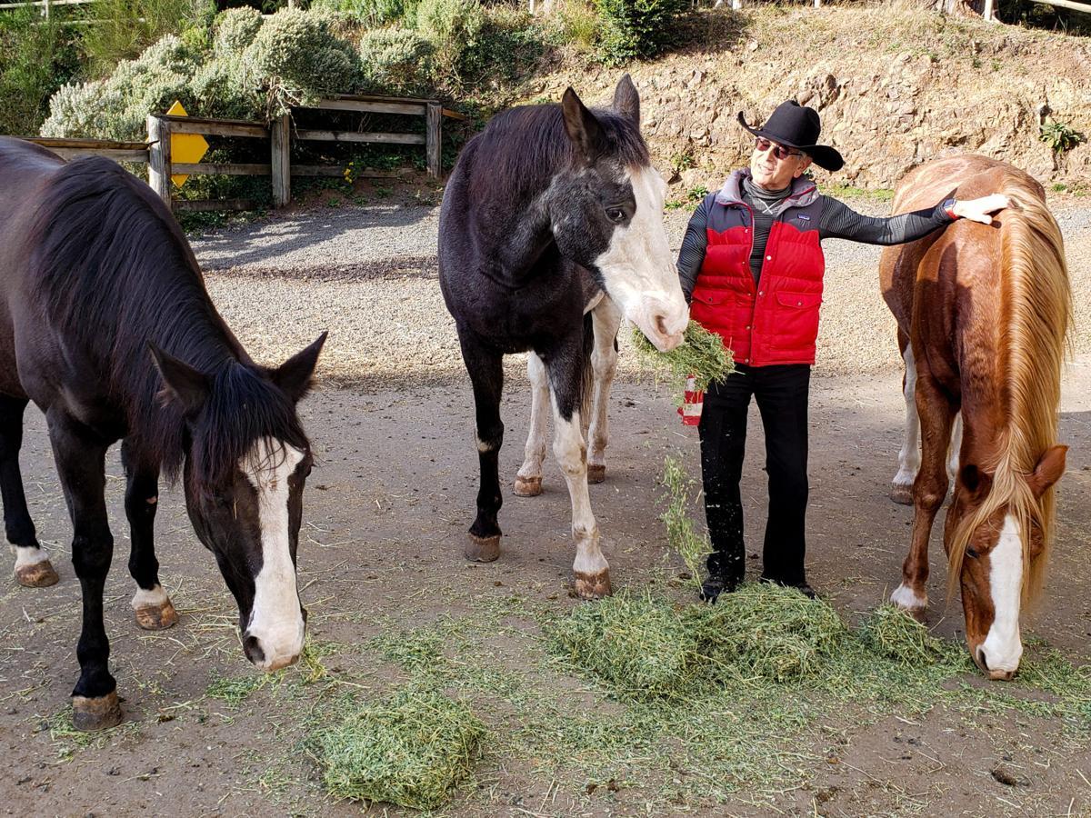 Bob Wayne feeding his horses