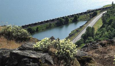 Oregon to OK  $42 million for  coal, oil on rails