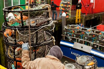 Crab season to open in January