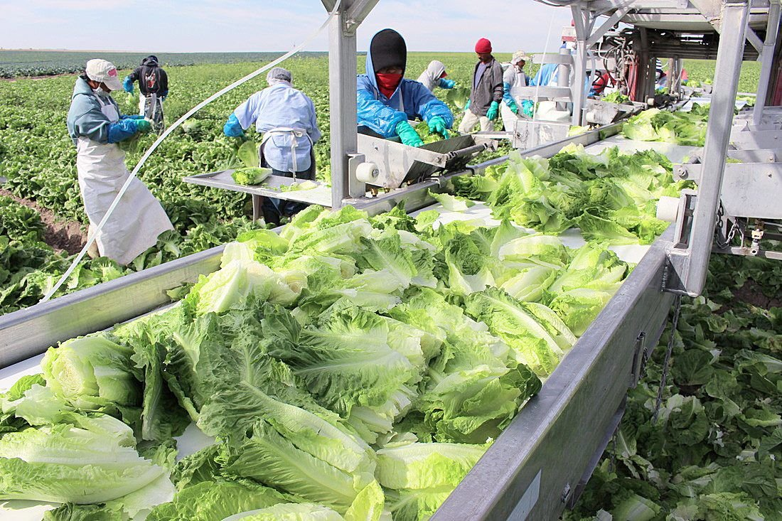 Some worry as crop production moves outside U.S.