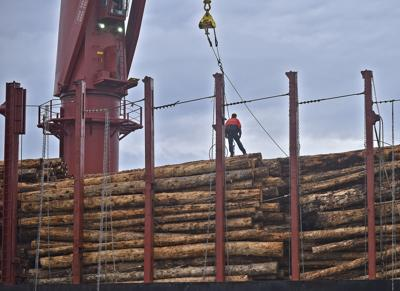 Log exports on hold due to trade war