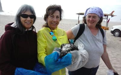 Why are North Coast beach birds dying?