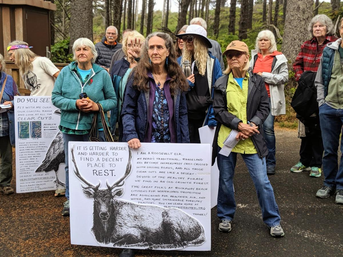 South County residents rally over state timber sale concerns