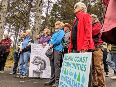 People rally against proposed timber sale