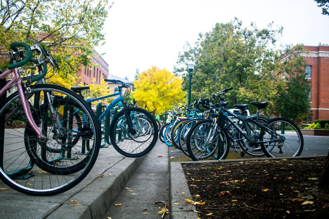Bike theft on campus: Advice to make sure your bike is safe