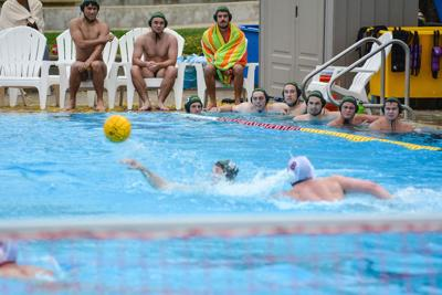 Men's club water polo one of the strongest in Pacific Northwest, but still wants to grow