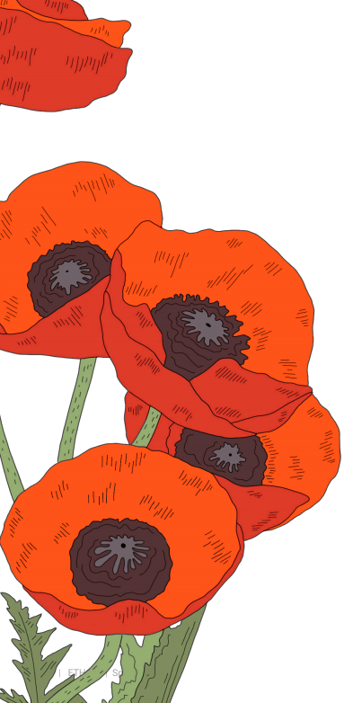 red detail.png