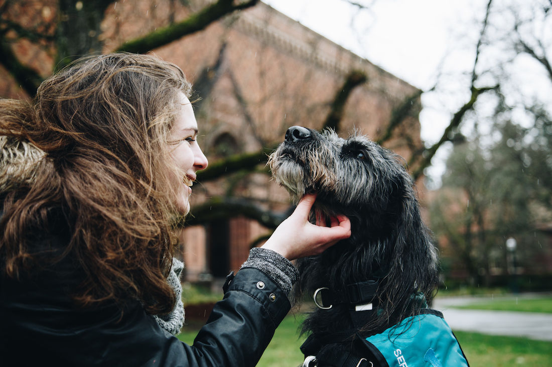 Belonging to Each Other: A labradoodle to lean on