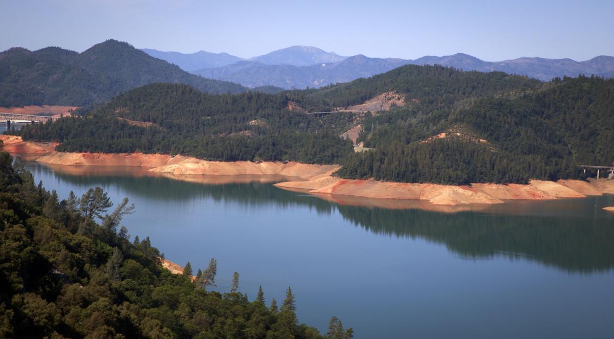 Tragedy at Shasta Lake