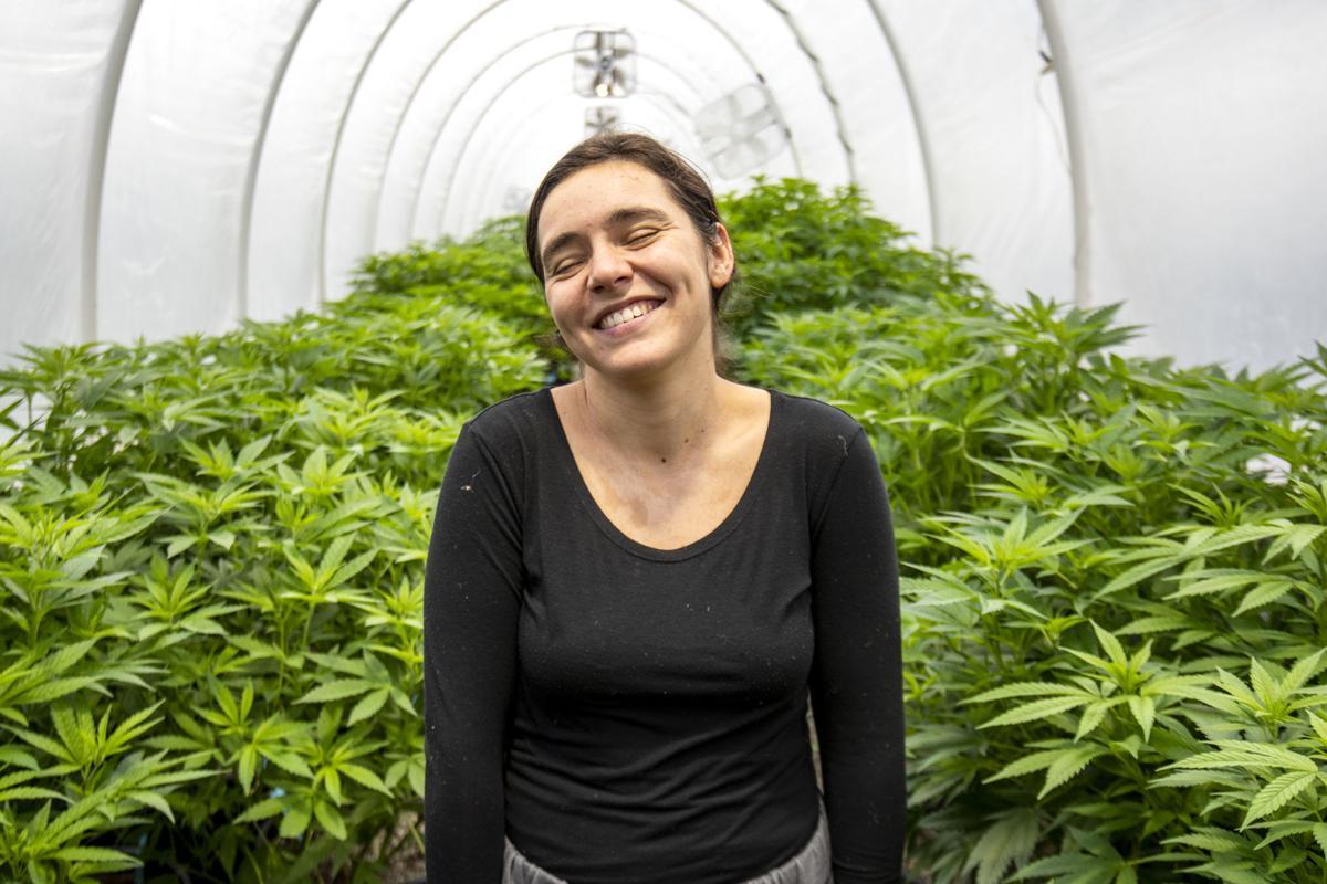 Life of a Cannabis Farmer 2