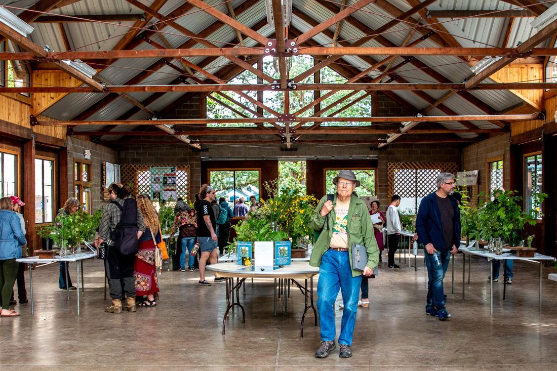 Photos: Wildflower and Music Festival returns to Mount Pisgah Arboretum