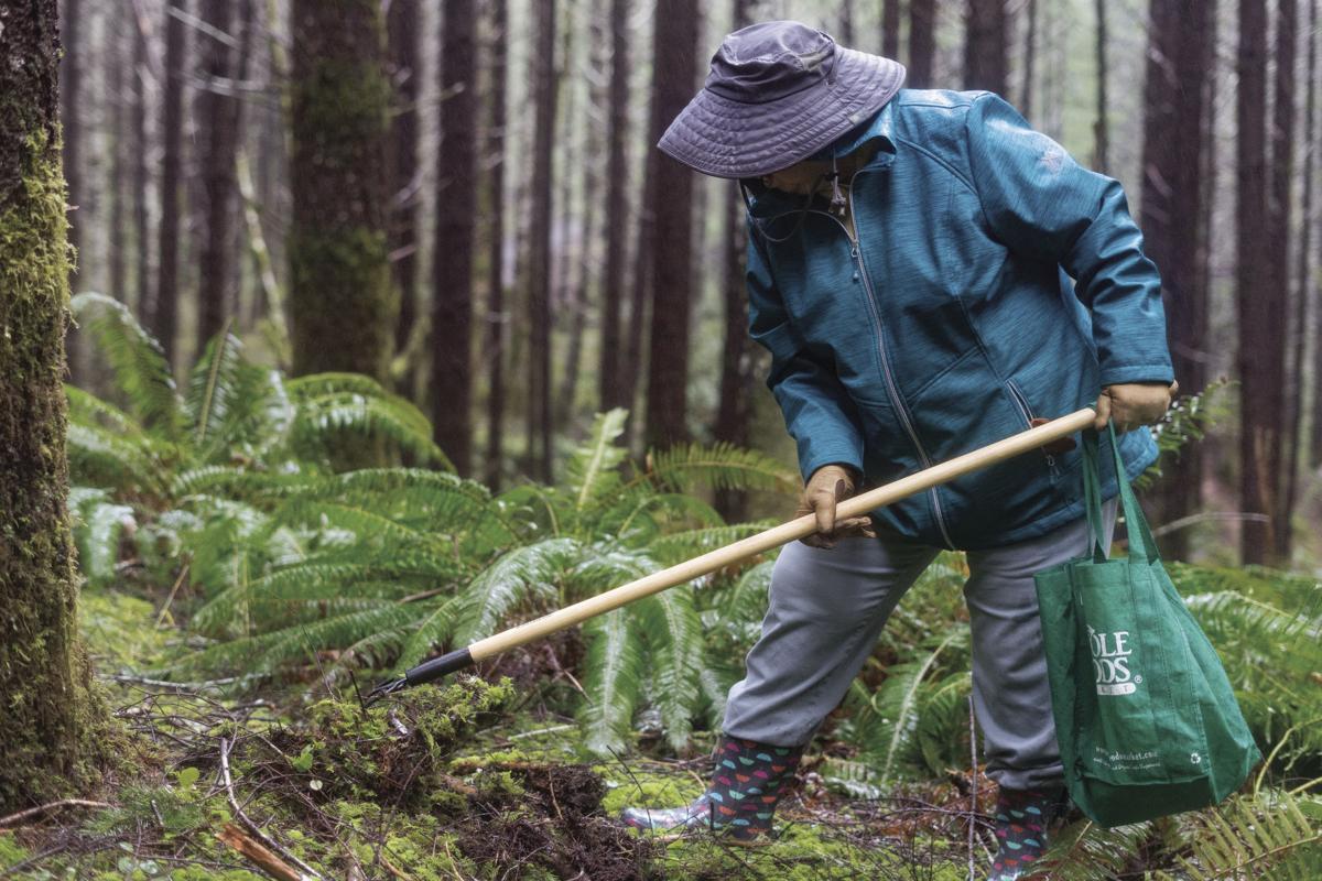 Trekking for truffles: The rise of the Oregon truffle