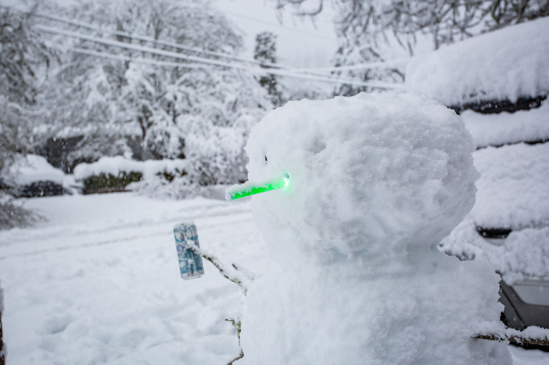 2019.02.25.SNOW-4.jpg