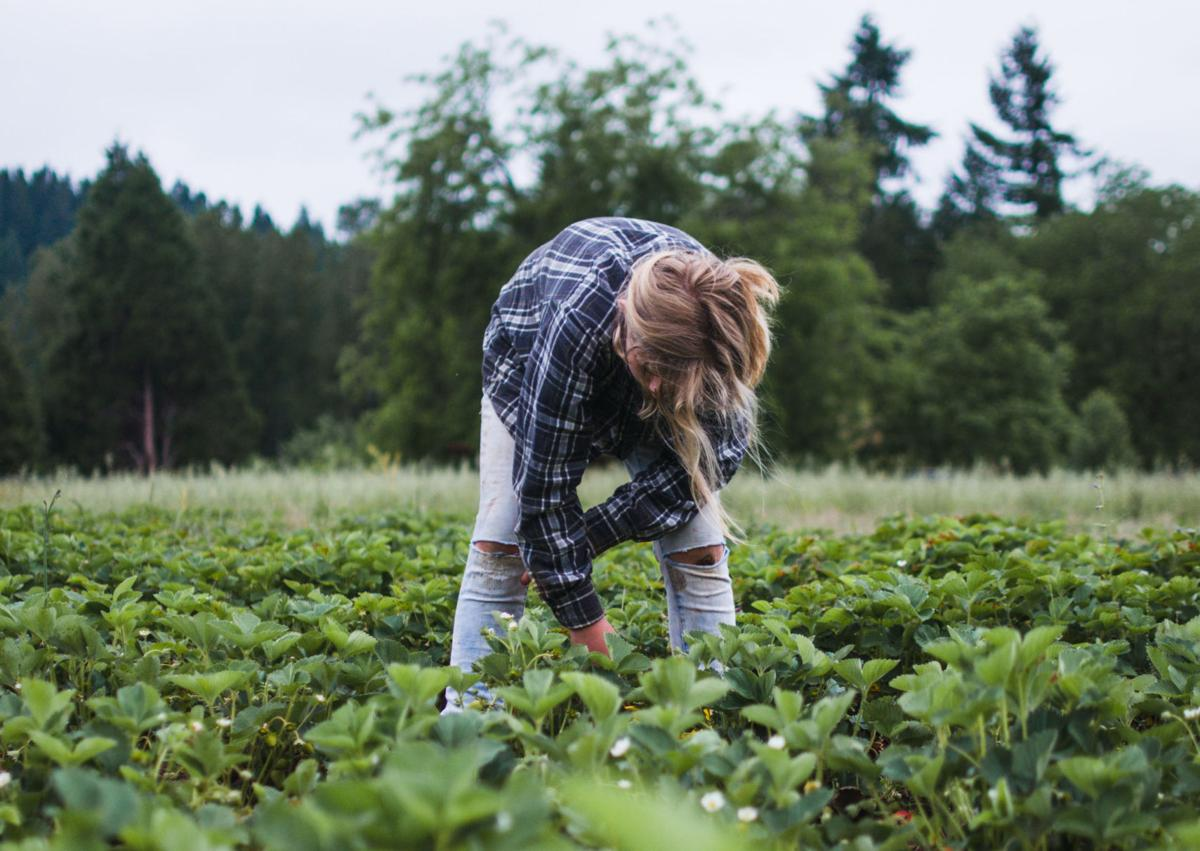 Age Gap: Do Millennials Want to Be Farmers?