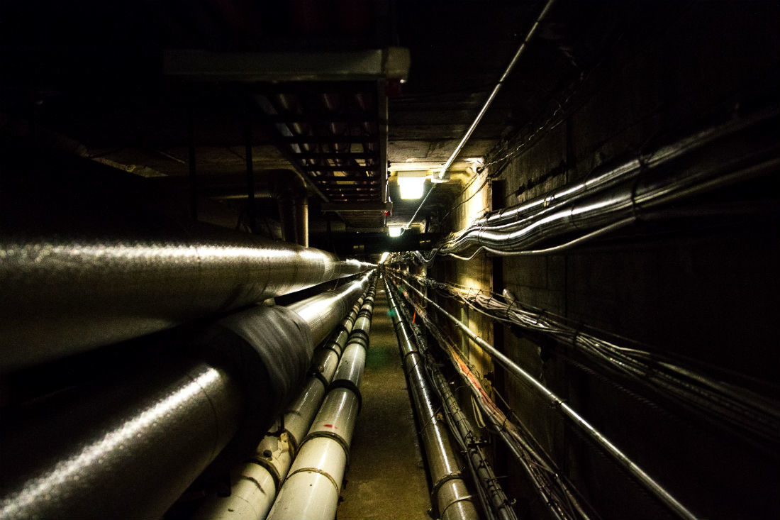 Tunnel vision: Exploring the heart and veins of campus
