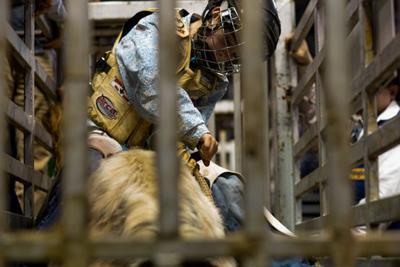 In Photos: Professional Bull Riding at Matt Knight