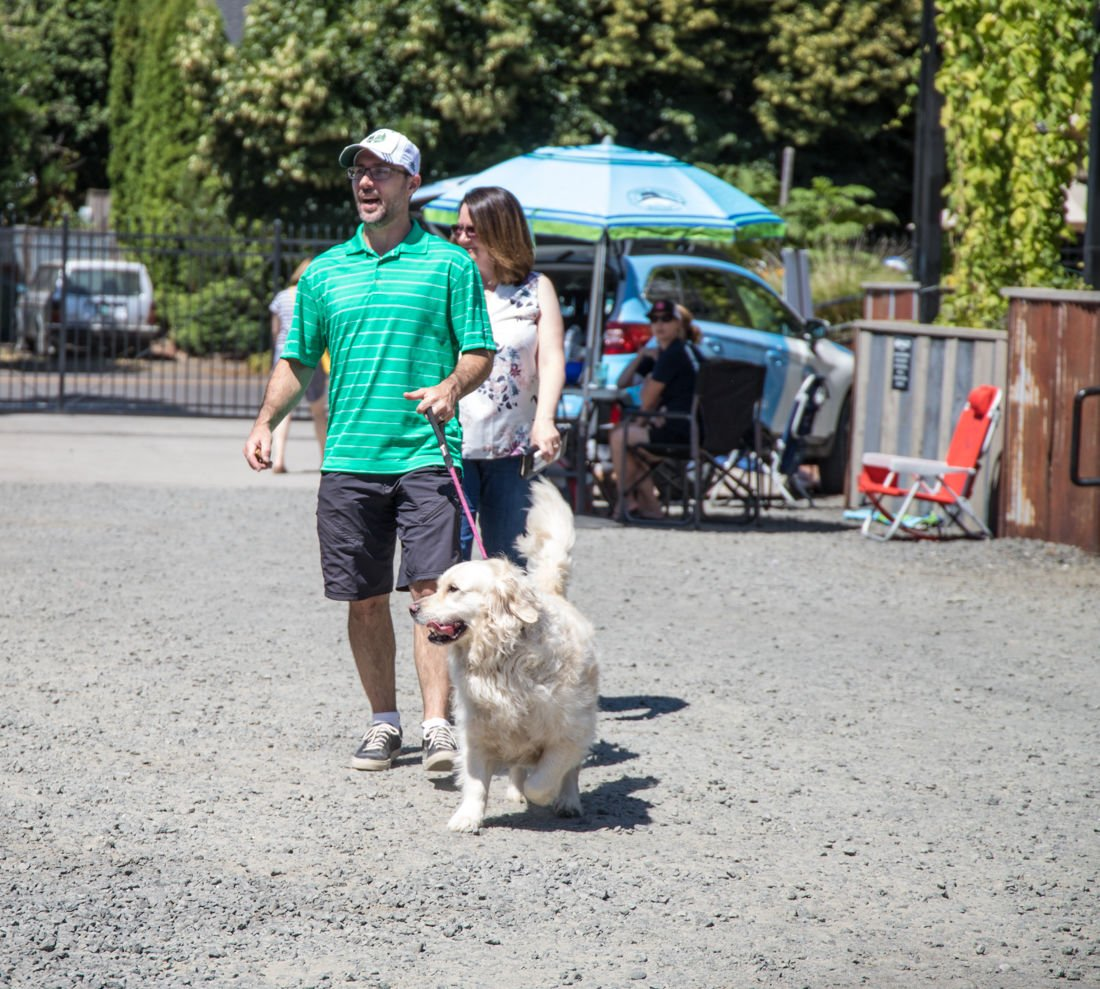 Photos: Eugene dog owners gather to Hops for Hounds