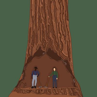 1/8 Logging Graphic