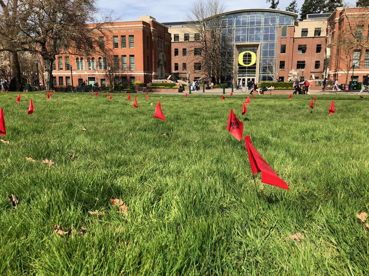 Hundreds of lawn flags seek to visualize the number of victims of school gun violence in U.S.