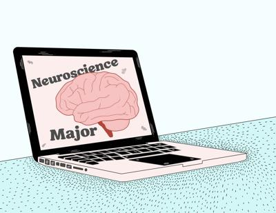 Neuroscience Major 11/13