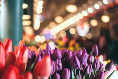 Oregon's Must-See Flower Gardens